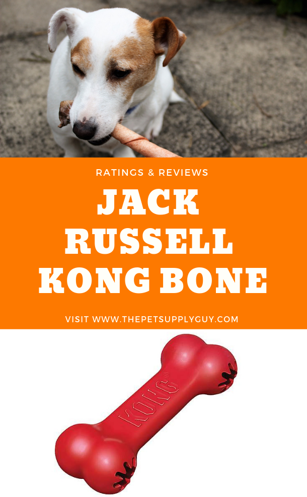 Best Toys for Jack Russells Jack russell, Dog toys, Dog