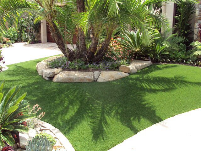 Pygmy Date Palm Tree Front Yard Landscaping Design Backyard Landscaping Designs Traditional Landscape