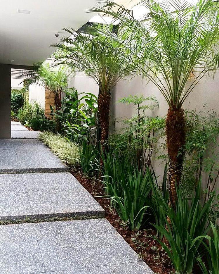 Quem Disse Que Um Corredor Não Pode Ser Atraente? Jardim Novinho Em Folha,  Plantado · Gardendesign LandscapeLandscape LandscapedesignLandscapedesign  ...