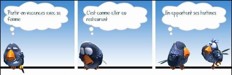 Les birds dessin s humour pinterest oiseaux for Blague de la chaise