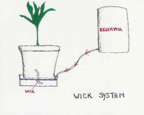 Hydroponics wick watering system do with mason jars on a stacked flowers ccuart Image collections