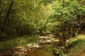 pictures of cades cove tn - Google Search
