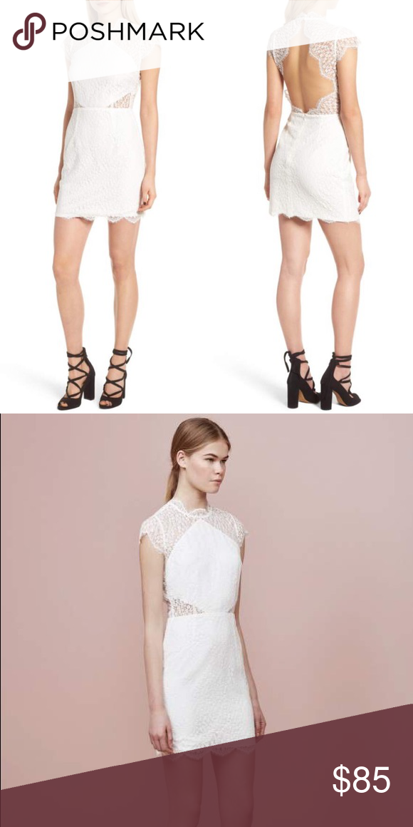 b39201c3057ad NET Keepsake The Label Daydream Lace Mini Dress NET Keepsake The Label  Daydream Lace Mini Dress