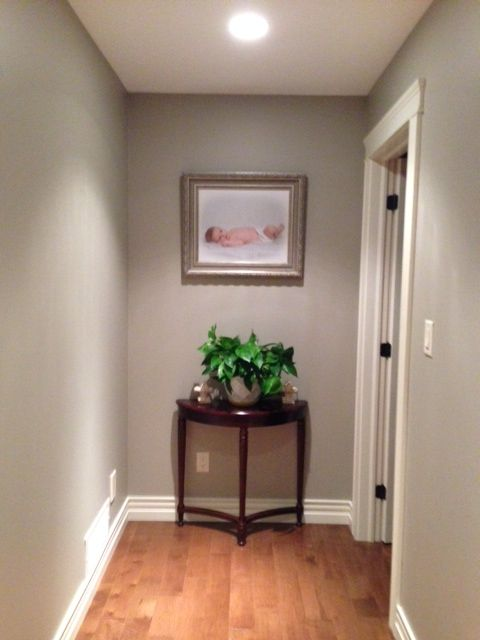 Benjamin moore pashmina gray upstairs hallways living room bathroom home pinterest for Living room and hallway paint colors