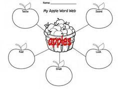 Apple Word Web Graphic Organizer- 5 senses ~ Freebie