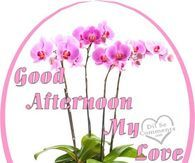 Good Afternoon Sister And Yours Enjoy It