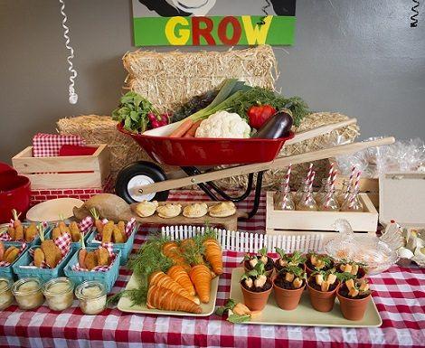 Decoracion de una fiesta infantil campestre birthdays in for Decoracion de mesas dulces infantiles