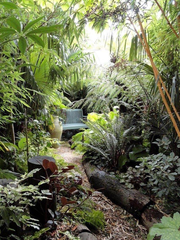 This Lush Jungle Style Garden Would Be Perfect For A Small Urban Backyard Small Backyard Landscaping Jungle Gardens Diy Backyard Landscaping