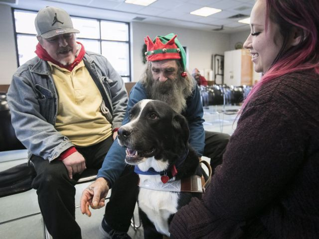 The dog that helps the homeless