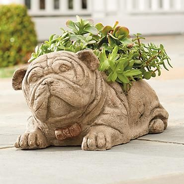 I'm pretty darn sure I need this!! Winston the Bulldog Planter ... on planters crackers, planters pecans, planters sunflower kernels, planters guy, planters logo, planters nutmobile, planters nut bar, planters almonds, planters holiday pack, planters brittle nut medley, planters honey roasted, planters walnuts, planters nut man, planters cashews, planters holiday collection, planters peanutbutter, planters mixed nuts, planters potato chips, planters sunflower seeds, planters candy,