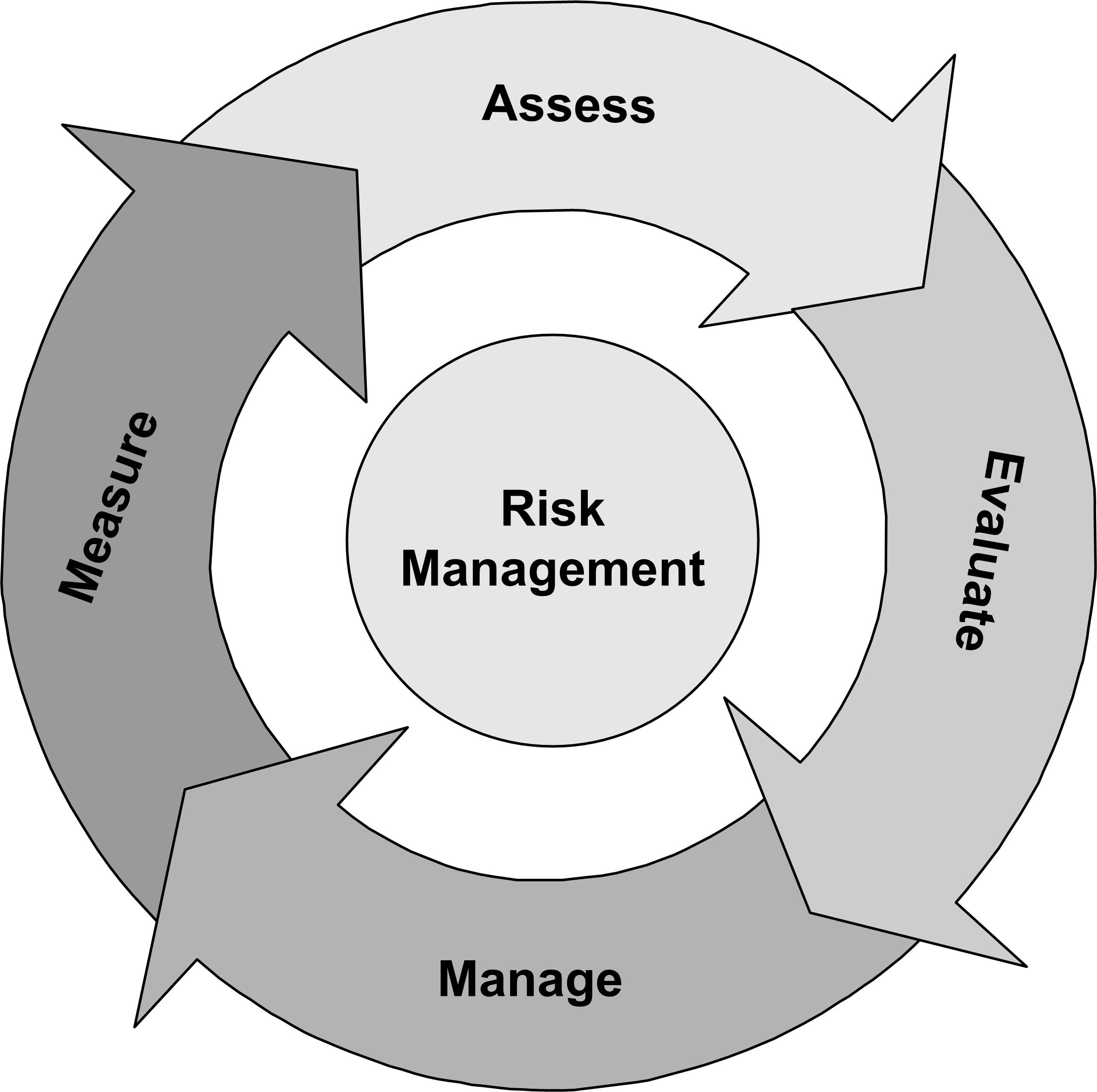Provide An Accurate Definition And Explanation Of A Risk