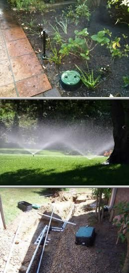 Looking for local lawn care services in Fountain Hills? Take a peek ...