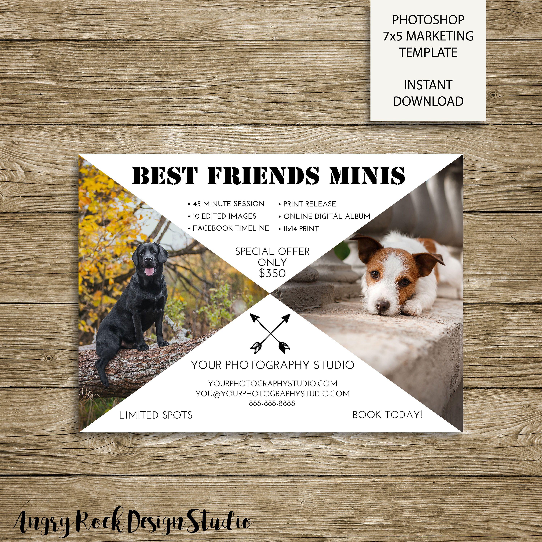 Best Friends Stencil Pet Photography Mini Session 5x7 Photoshop Marketing Template Animal Photography Photography Mini Sessions Pet Portraits Photography