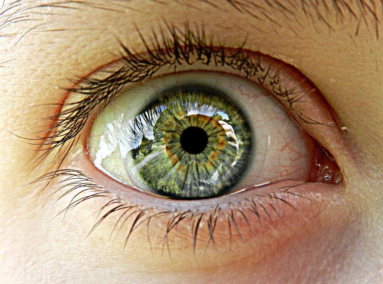sarahs eye reflection by nightrose0087 sarahs eye