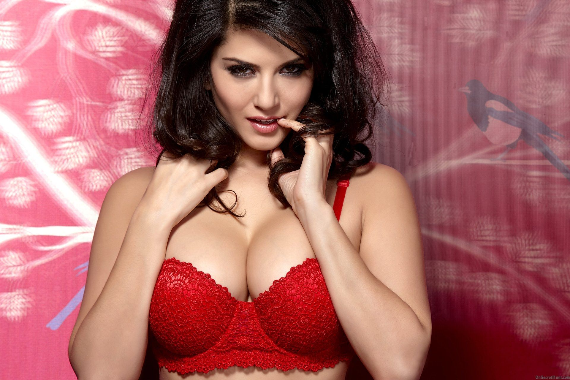 Sunny Leone Image Hd Live HD Wallpapers PC LL