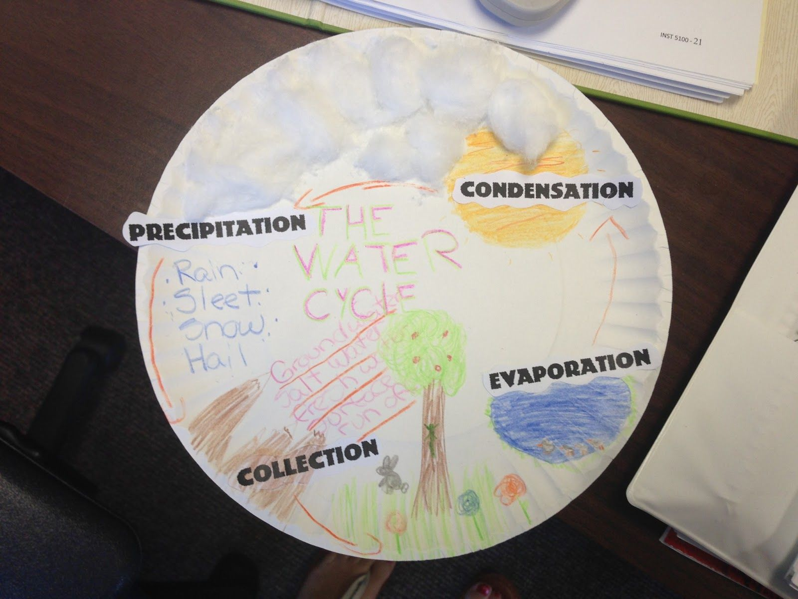 Water Cycle Paper Plate