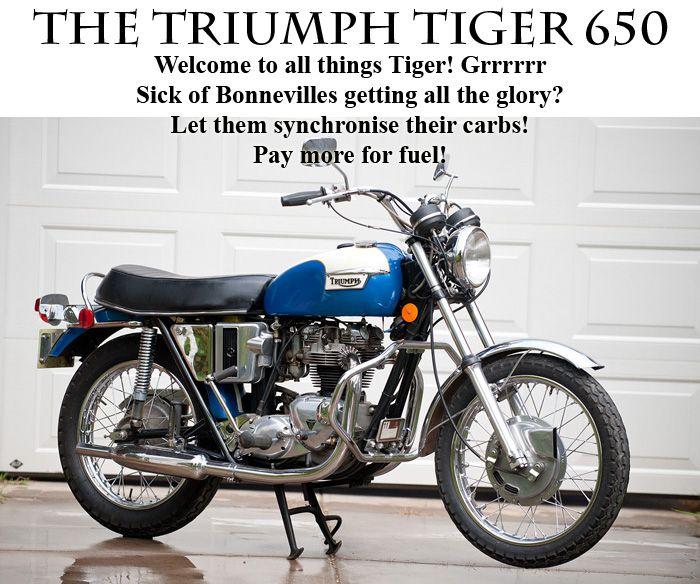 Triumph Tiger 650 | The Triumph Tiger 650