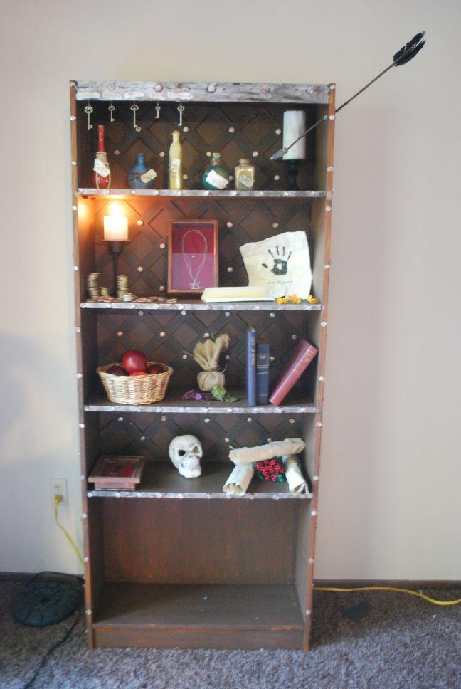 Nichelle Lyons Skyrim Inspired Bookshelf