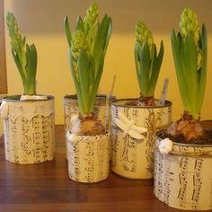 fleurs d 39 hiver 2 clous 1 pinceau plantations. Black Bedroom Furniture Sets. Home Design Ideas