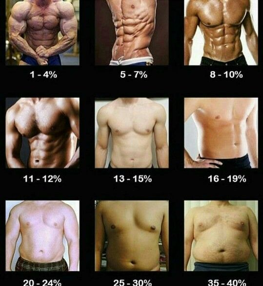 masa o grasa corporal