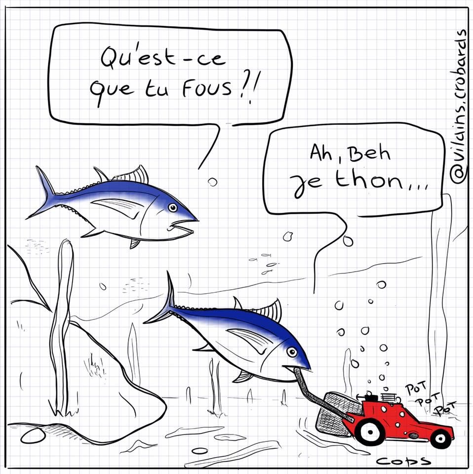 Fish Dating blagues