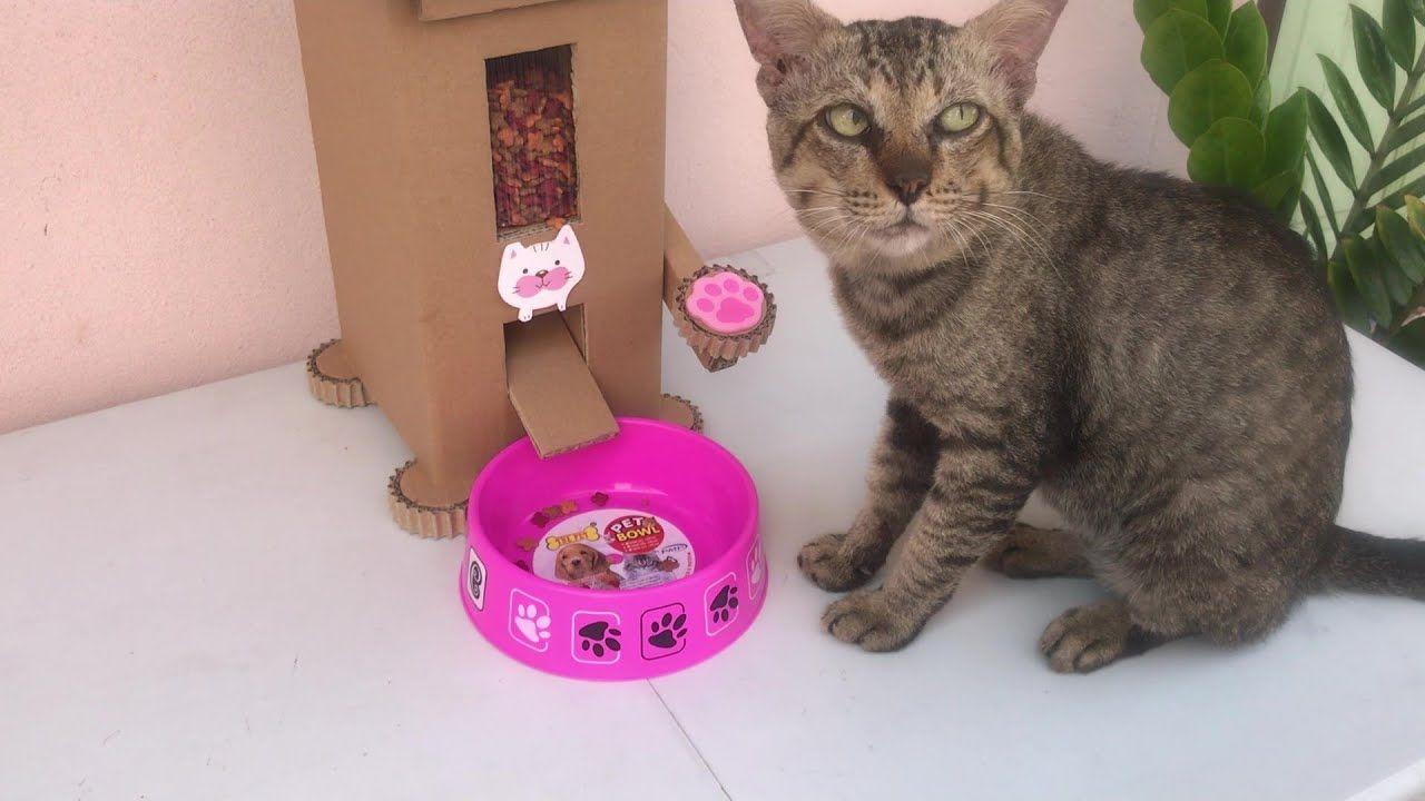 ทำเคร องให อาหารแมวจากกระดาษแข งท บ าน Diy Cat Food Dispenser From C การออกแบบปกหน งส อ วอลเปเปอร โทรศ พท