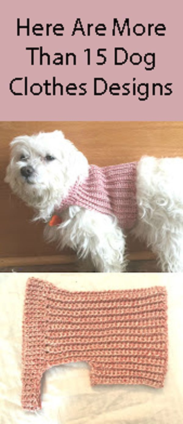 Diy dog clothes save money and have the smartest dog in town diy crochet dog sweater solutioingenieria Gallery
