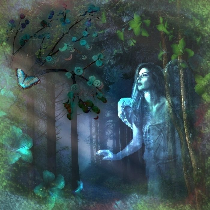 The Dark Forest Credit:  Image Google  Background Deviantart.com  Elements Polyvore