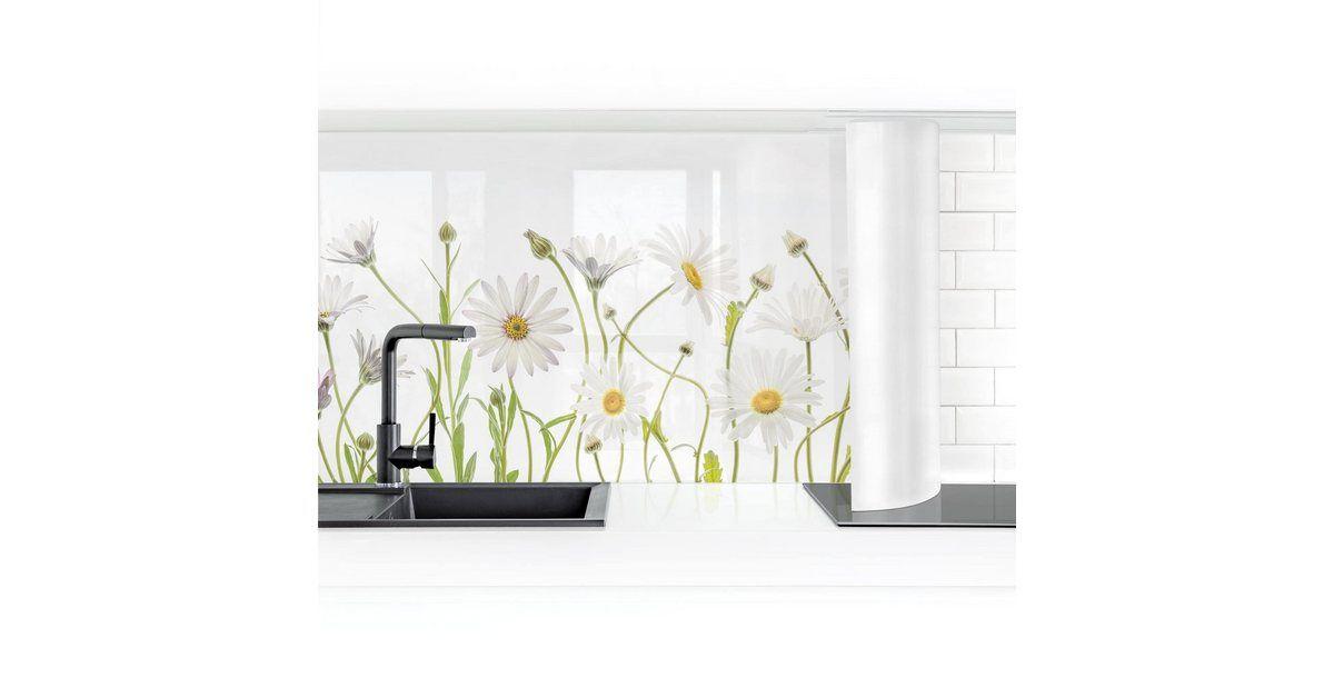 Küchenrückwand »Leichter Gänseblümchen Mix I«