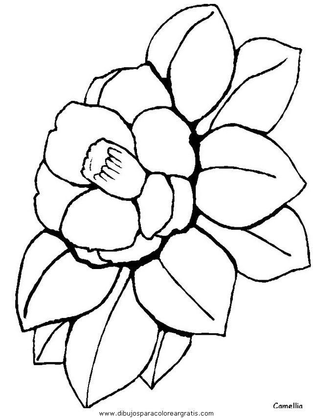 naturaleza/flores/flores_128.JPG | Dibujos para colorear con ...