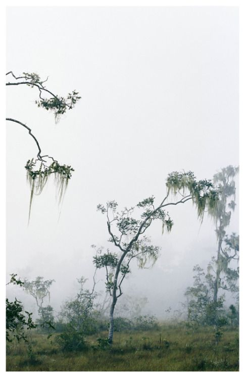 Axel Hutte, Belize, 2007, Ditone print
