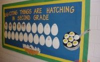 egg-citing things are hatching in second grade