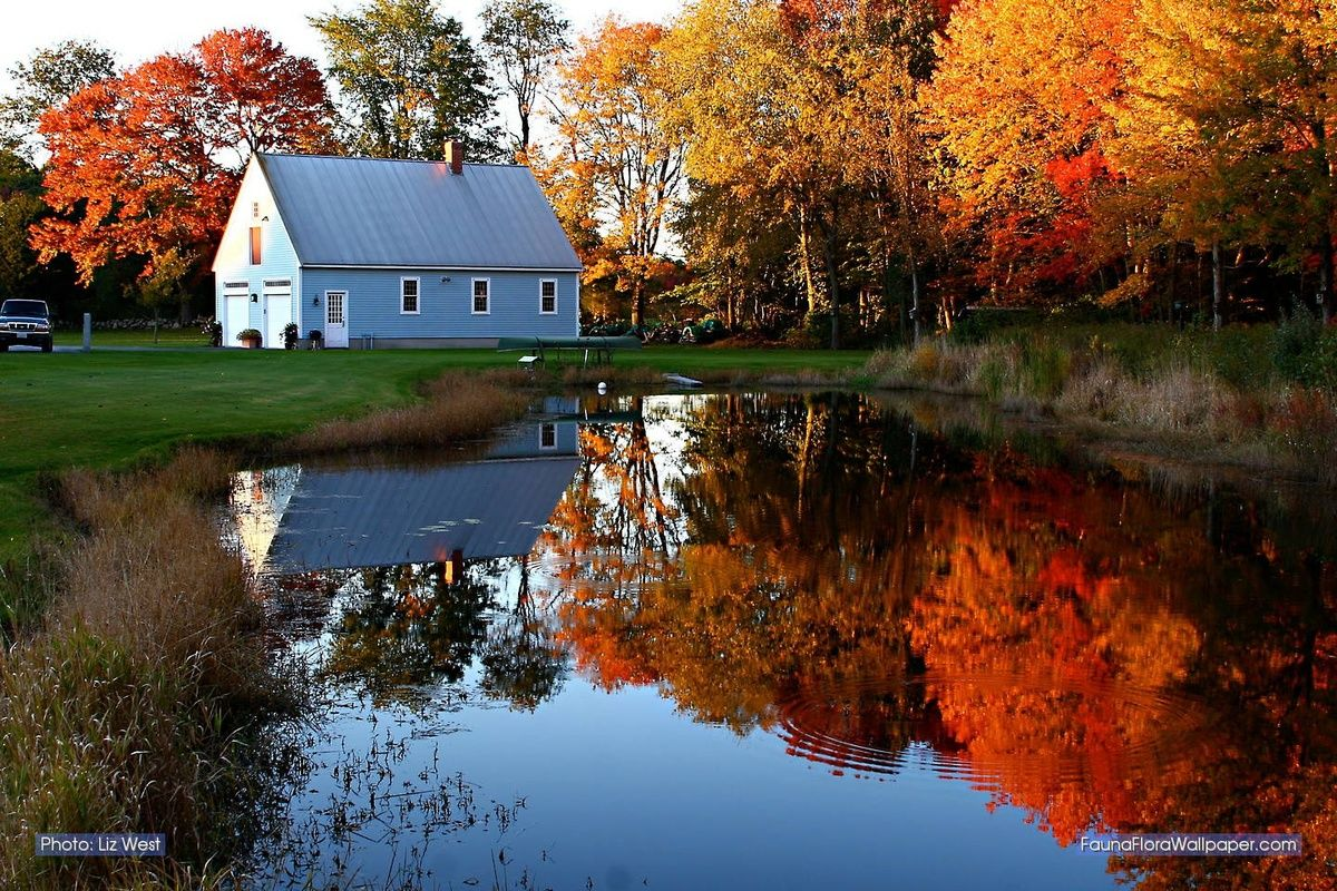 Pin by LauraK Collins on Scenic Beauty New england fall