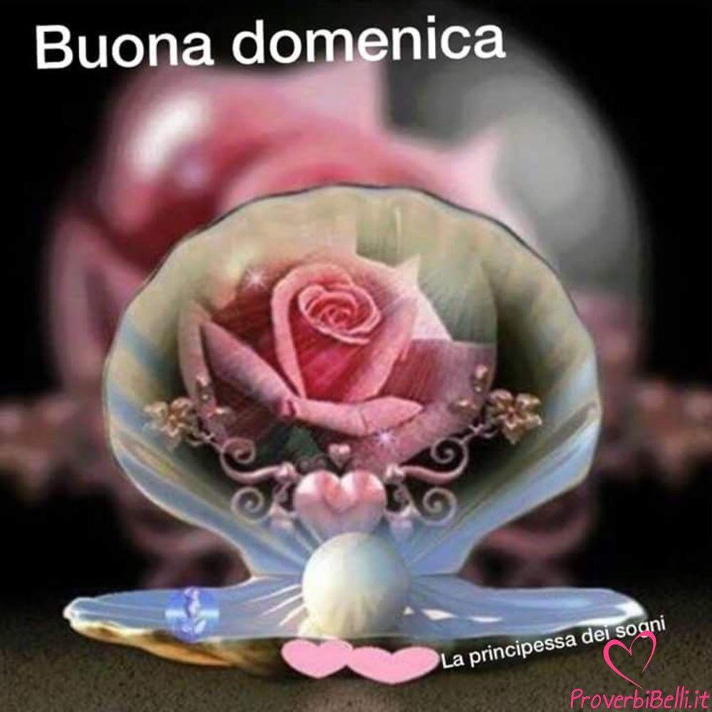 buongiorno domenica immagini belle per whatsapp proverbibelli it