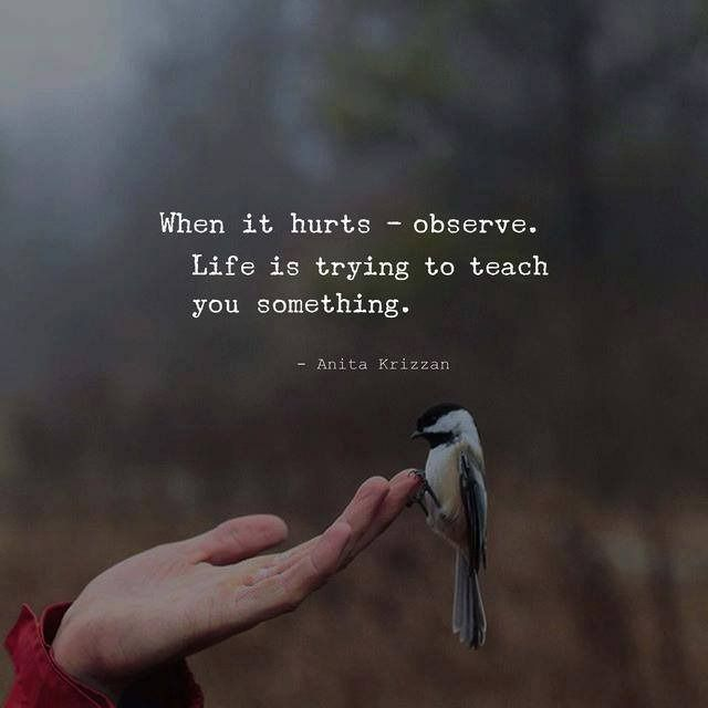 When it hurts - observe. —via http://ift.tt/2eY7hg4