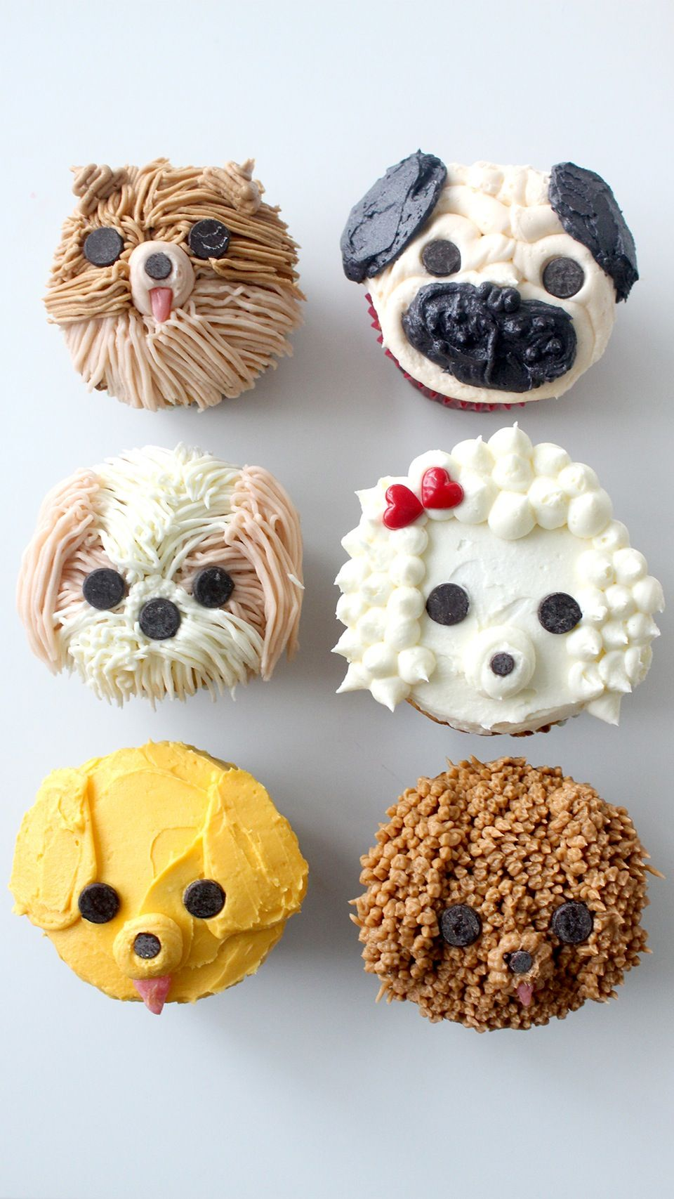 Dog Cupcakes Recipe Dog cupcakes, Cupcakes for dogs