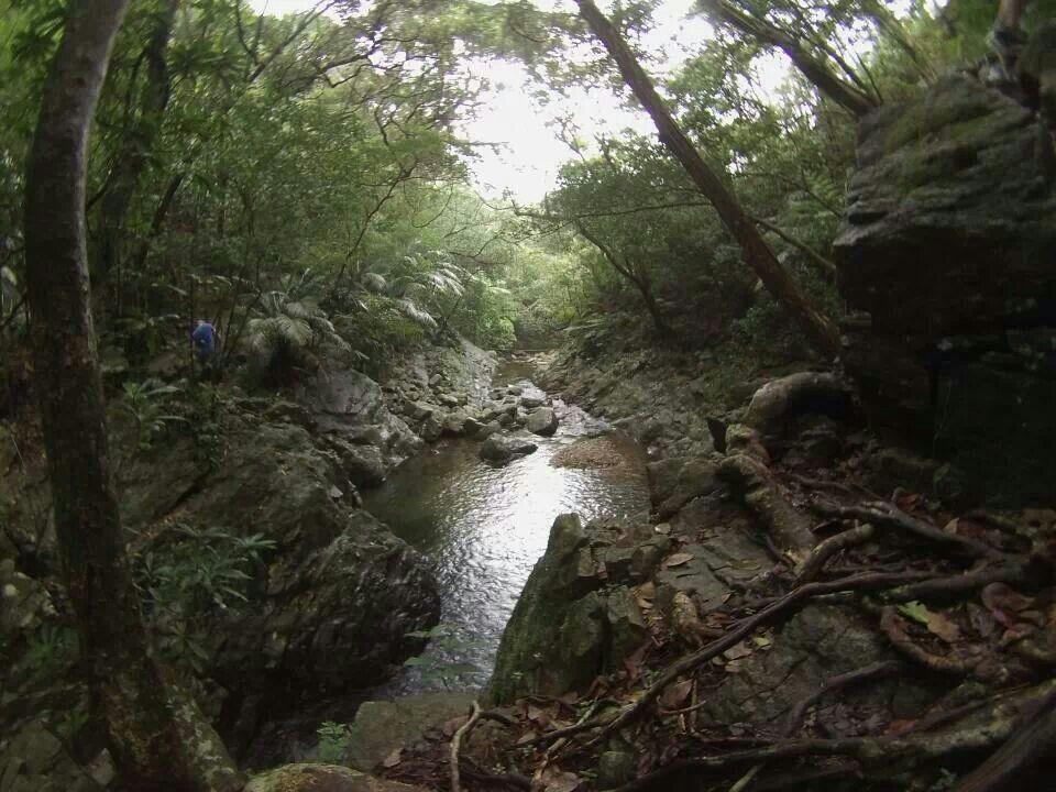 Japan......... Serenity