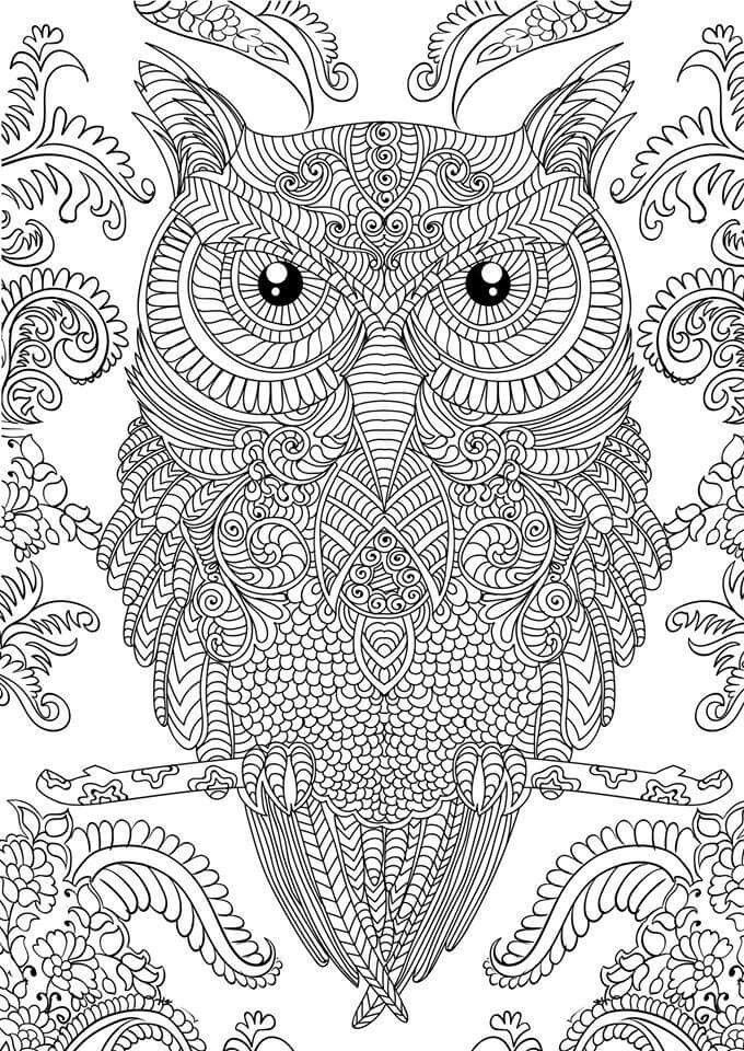 tundra animals coloring pages free printable pictures - 680×960