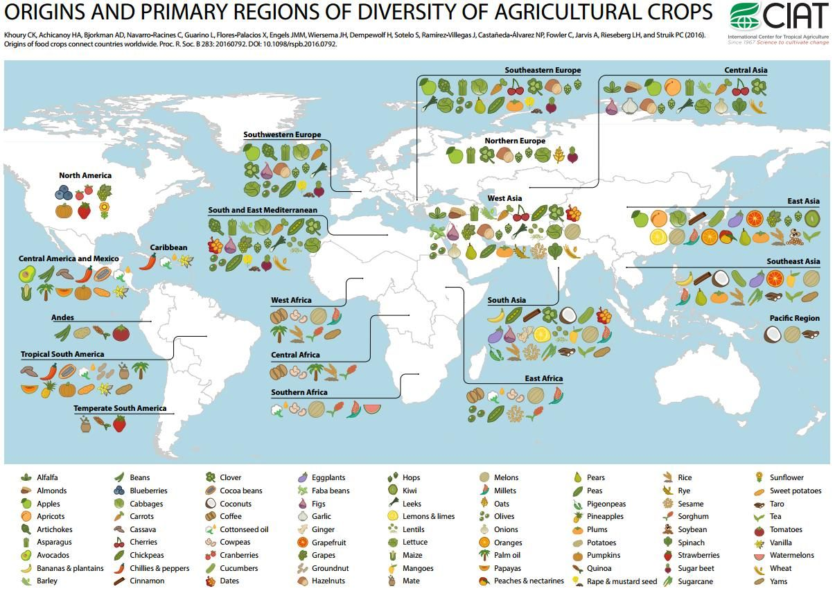 from The Decolonial Atlas site Map, Food map, Columbian