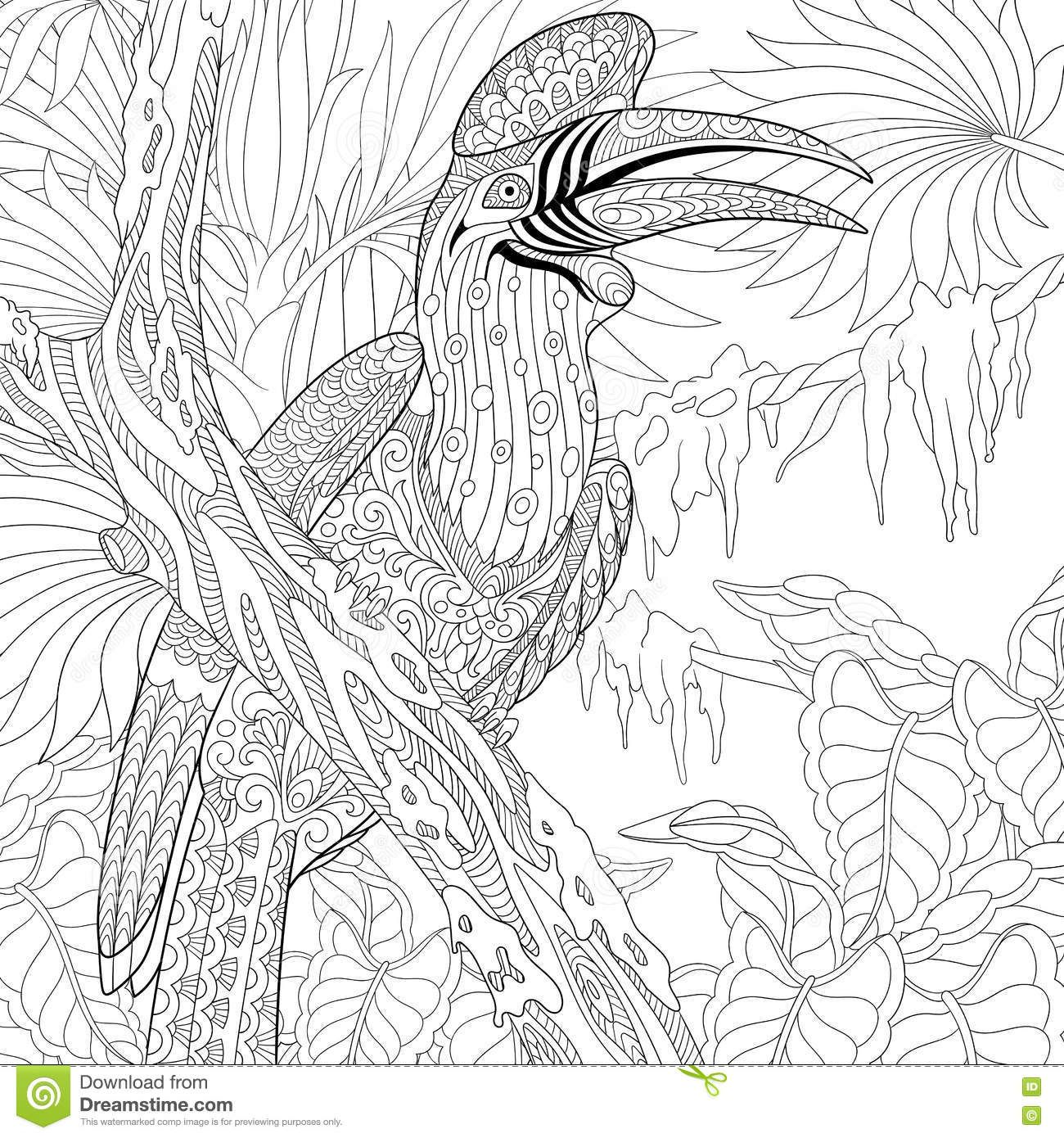 Zentangle Stylized Rhinoceros Hornbill Bird Buceros Stock Vector