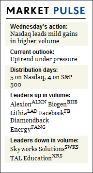 Leaders Still Act Fine As S&P 500 Edges To A New High