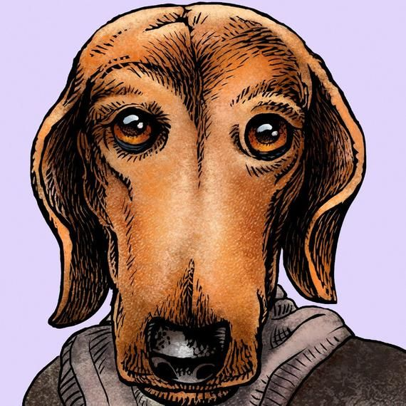 Virginia Woof- Whimsical portrait of Author Virginia Woolf as a Dachshund