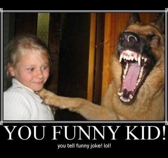 fc651bcf8857732431a5b7f981e31f43 when i tell a joke www meme lol com funny gifs pinterest,You Funny Meme
