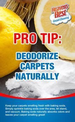 Easy Carpet Cleaning And Deodorizer Tip In Birmingham Al