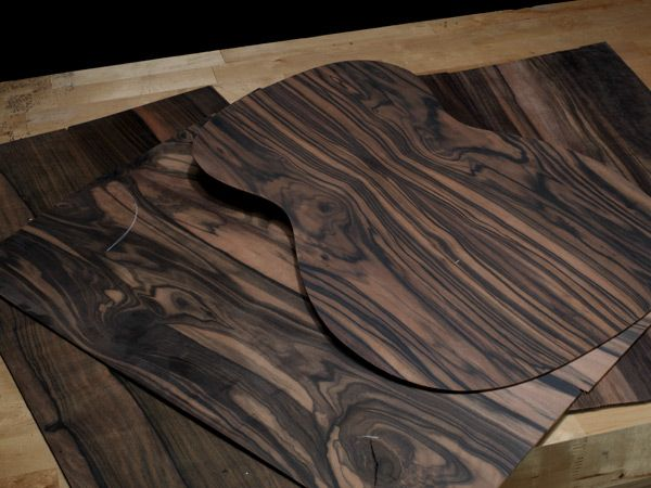 Discover Wood Profile: Striped Ebony (Macassar) from the Breedlove Custom Design Center.