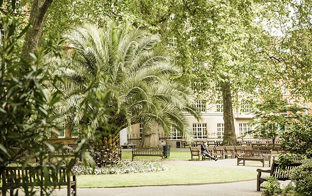 London is looking beautiful in the sunshine today. Make sure you take a moment to enjoy this wonderful city! #seelondon #London #visitlondon #londonparks #lovelondon #Spring #springtime #londonvacation #vacation