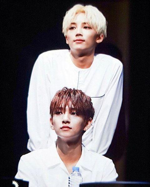 When pimples on Seventeen's members' face are luckier than my life could ever be  [170526] SEVENTEEN at CTS Art Hall Fansign  Shu's   FOLLOW @pristin.girlz    [ #seventeen #pledis #wonwoo #joshua #dk #dokyeom #jeonghan  #scoups #jun #hoshi #the8 #dino #mingyu #woozi #seungkwan #vernon #korea #kpop #svt #meanie #seungcheol #exo #got7 #bts #twice #snsd]
