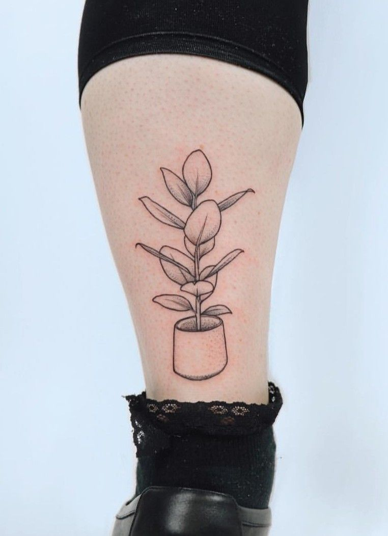 Zaya Hastra House Plant Tattoo Plant Tattoo Tattoos Botanical Tattoo Design