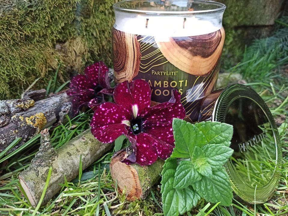 Tamboti Woods 3 Wick Jar Candle In 2020 Candle Jars Scented Candle Jars Candles