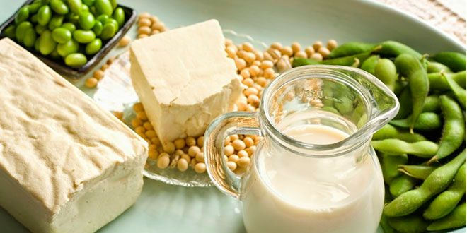 Proteínas Vegetales Conoce Las Mejores Fuentes De Proteína Vegetal Alimentos Ricos En Calcio Proteina Vegetal Alimentos Que Reducen El Colesterol